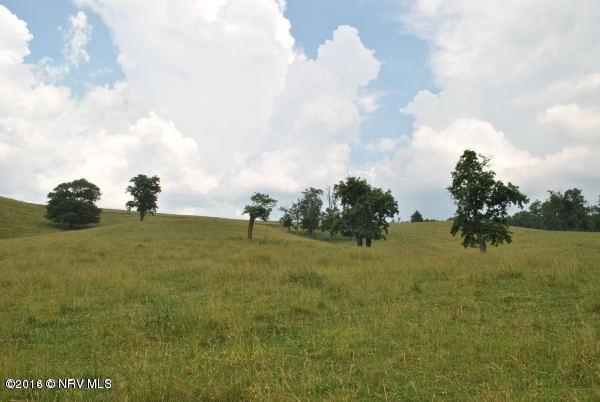 Lots/Land - Floyd, VA (photo 5)