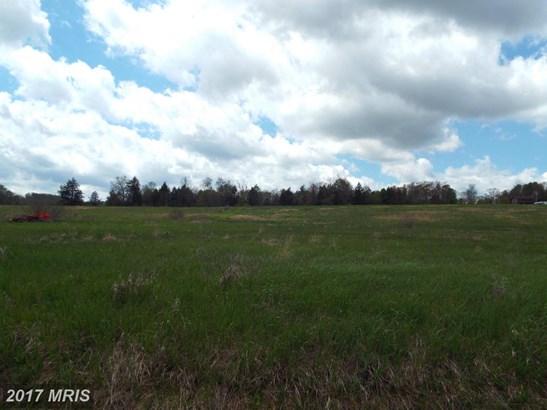 Lot-Land - TERRA ALTA, WV (photo 1)