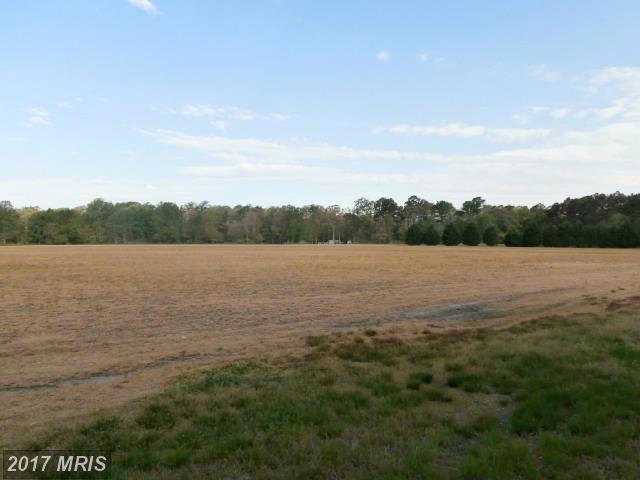 Lot-Land - PRESTON, MD (photo 3)