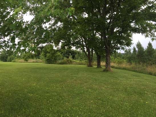Land (Acreage), Lots/Land/Farm - Union Hall, VA (photo 5)