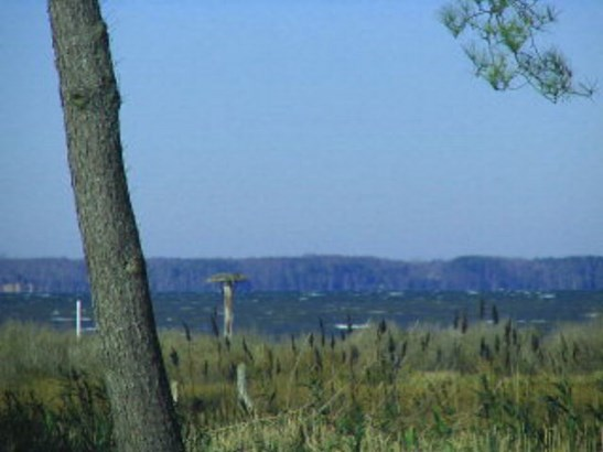Land - Chincoteague, VA (photo 1)