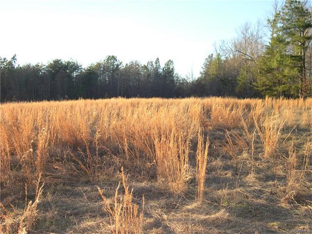 Lots/Land - Montpelier, VA (photo 5)