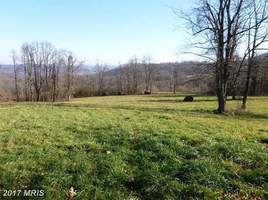 Lot-Land - LINDEN, VA (photo 4)