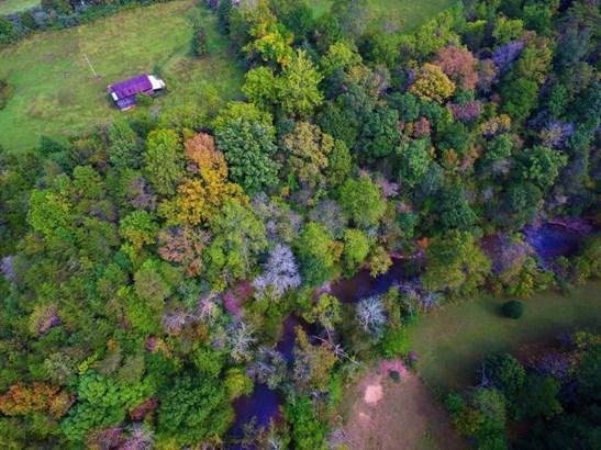 Farm, Horse - Glade Hill, VA (photo 5)