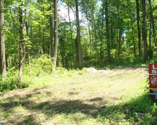 Lot-Land - UPPER BLACK EDDY, PA (photo 1)