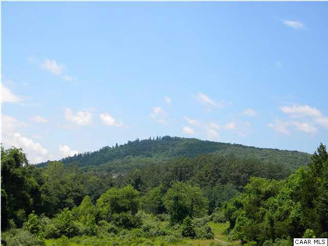 Land - CHARLOTTESVILLE, VA (photo 1)