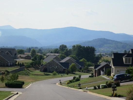 Residential, Cottage - Roanoke, VA (photo 4)
