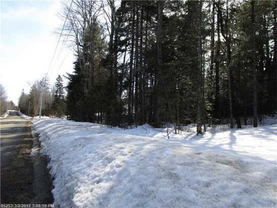 Cross Property - Greenfield Twp, ME (photo 5)