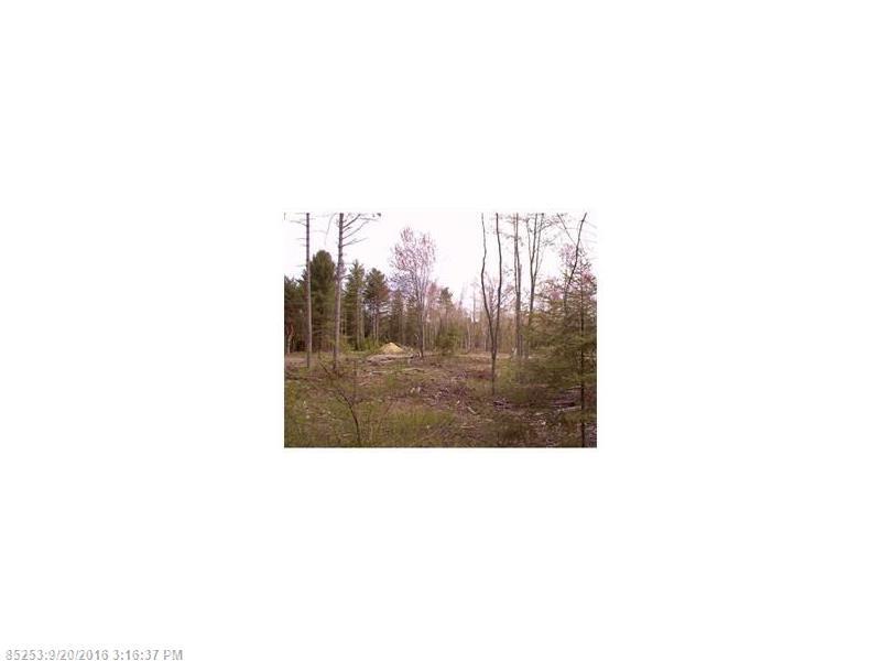 Cross Property - Greenbush, ME (photo 1)