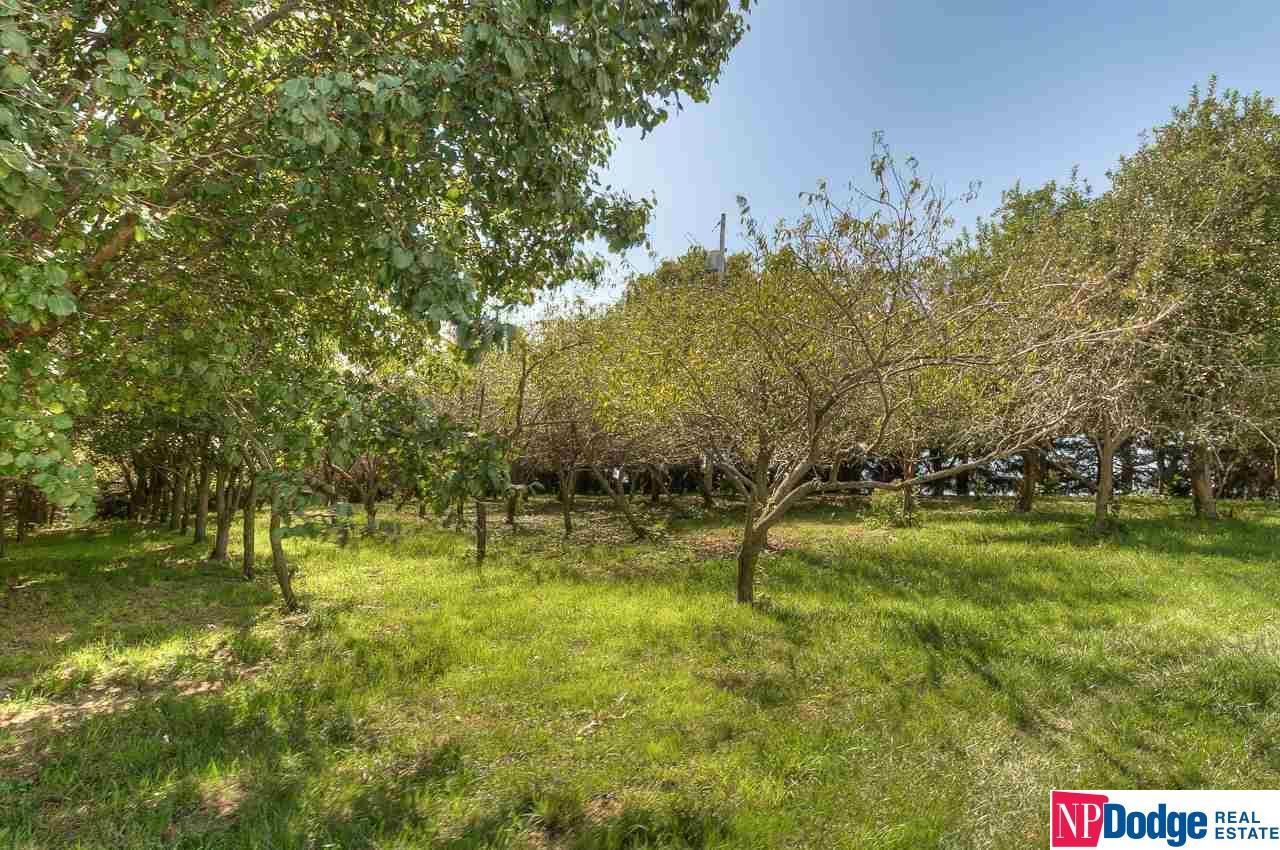 Farms/Ranches - Valley, NE (photo 5)