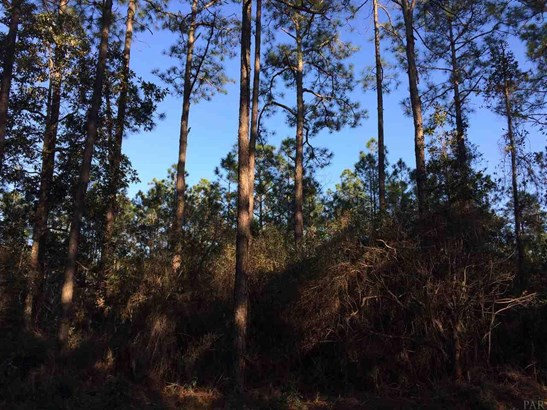 RESIDENTIAL LOTS - MILTON, FL (photo 3)