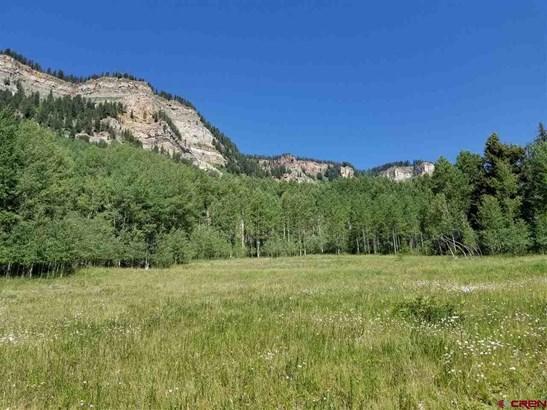 Mountain Property - Durango, CO (photo 1)