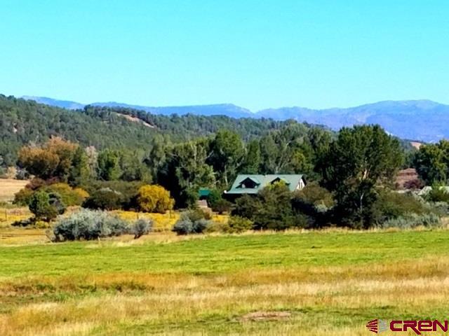 With Residence - Durango, CO (photo 4)