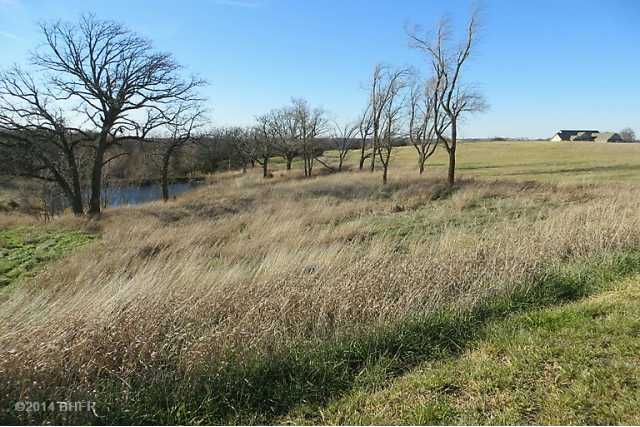 Residential, Ranch - Winterset, IA (photo 5)