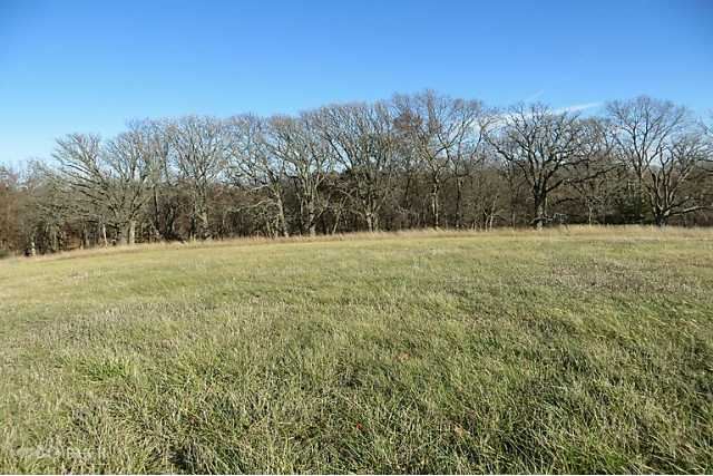 Residential, Ranch - Winterset, IA (photo 3)