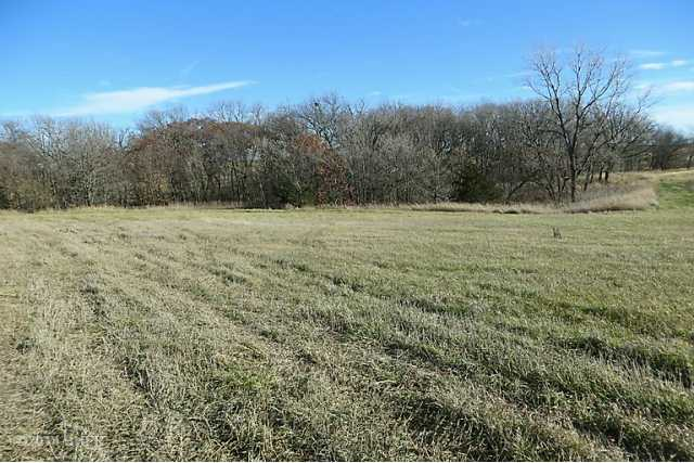 Residential, Ranch - Winterset, IA (photo 4)