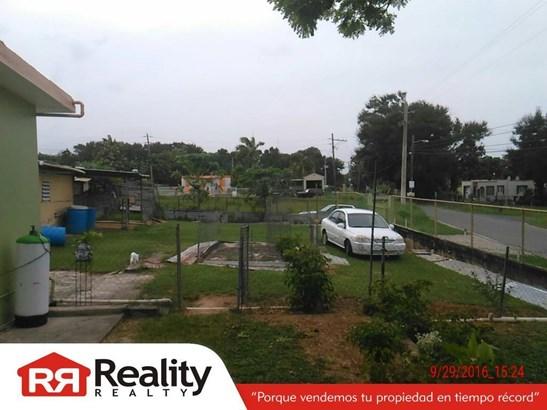 Bo. Factor 197, Arecibo - PRI (photo 3)