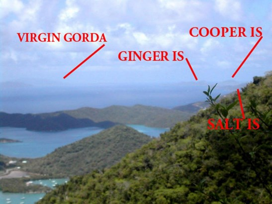 VIRGIN GORDA TO SALT (photo 1)