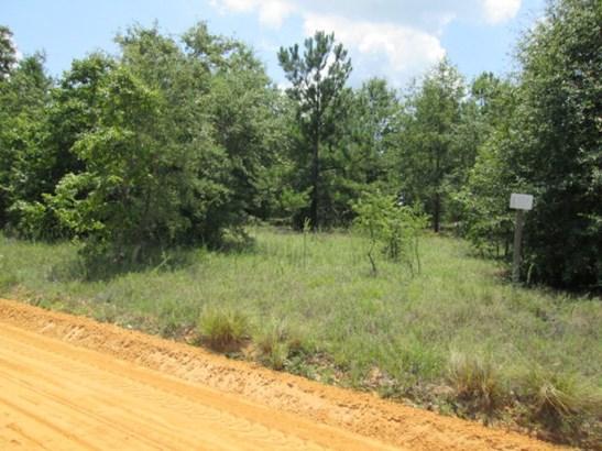 Nathanial Howard Road, Waynesboro, GA - USA (photo 1)