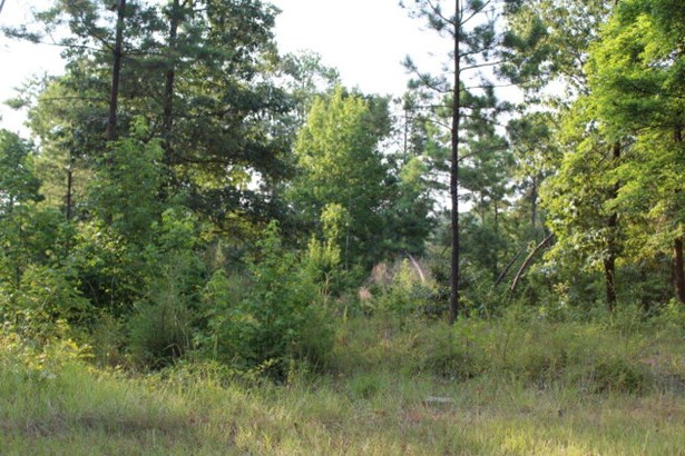 50b Jackson Road, Modoc, SC - USA (photo 2)