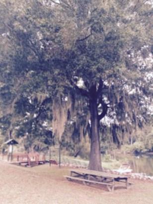 285 Rivers Run, Waynesboro, GA - USA (photo 5)