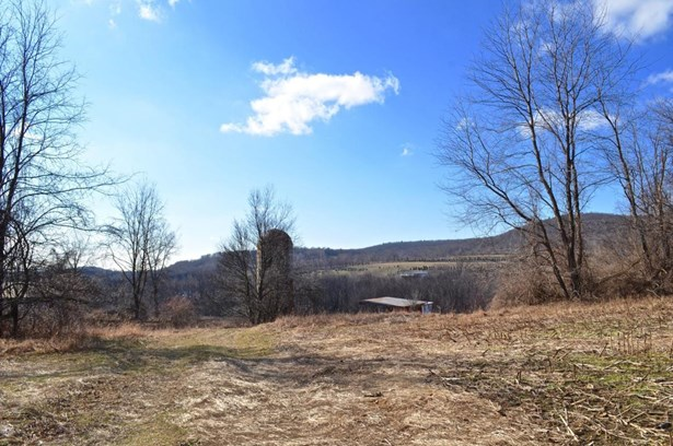 175 Overlook Rd, Copake, NY - USA (photo 3)