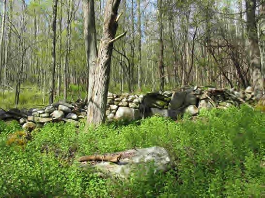 Mill River Great Barrington Rd, Great Barrington, MA - USA (photo 1)