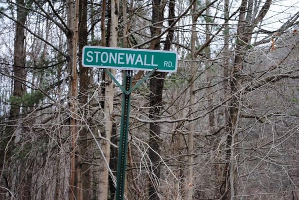 Stonewall Rd, Austerlitz, NY - USA (photo 1)