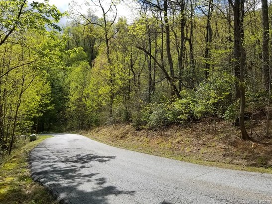 00  Ironwood Drive, Black Mountain, NC - USA (photo 5)