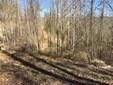 L30  Walnut Cove Road, Mars Hill, NC - USA (photo 1)