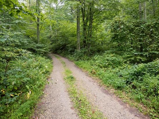 37 +/- Acres Shelton Branch Road, Barnardsville, NC - USA (photo 2)