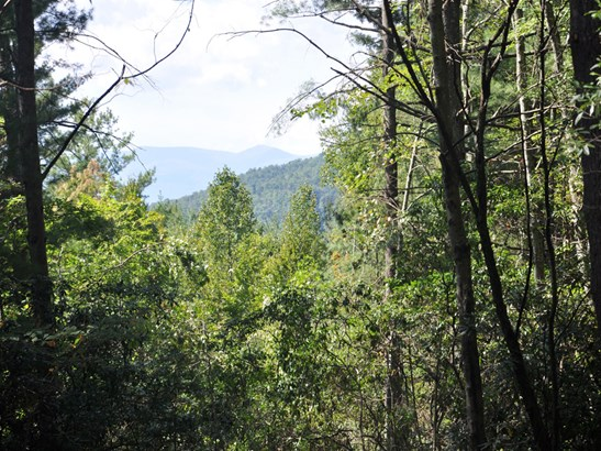 0  Top Of The Mountain Road, Pisgah Forest, NC - USA (photo 1)