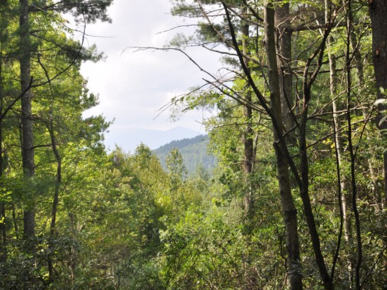 0  Top Of The Mountain Road, Pisgah Forest, NC - USA (photo 3)