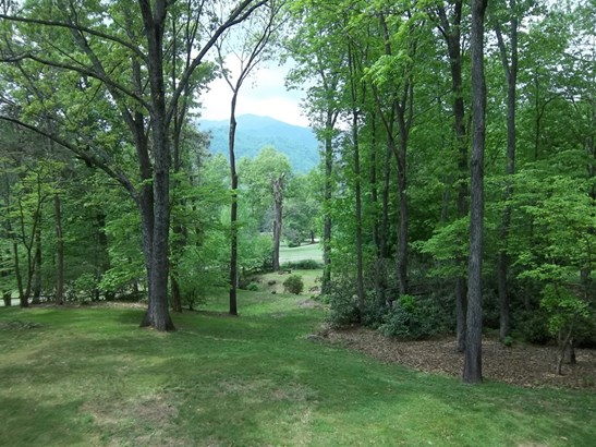 1488 Country Club Drive, Canton, NC - USA (photo 3)
