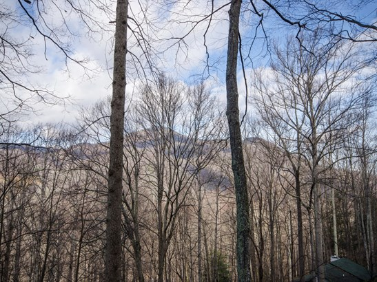468  Forest Drive, Maggie Valley, NC - USA (photo 3)