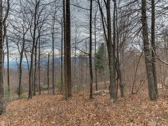 Lot 231  Chesterfield Drive, Mill Spring, NC - USA (photo 4)