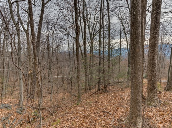 Lot 231  Chesterfield Drive, Mill Spring, NC - USA (photo 5)