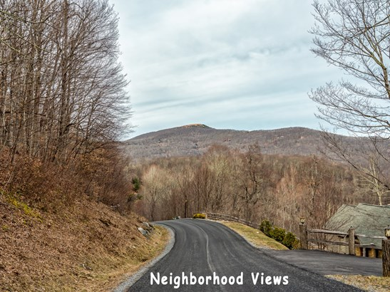 0000  Overlook Drive, Mars Hill, NC - USA (photo 5)