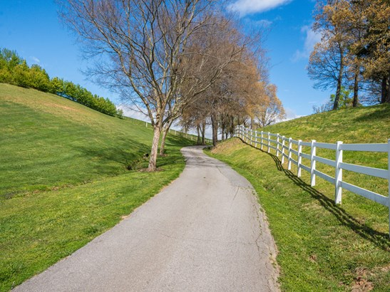 74.1 Acres  Nesbitt Drive, Mills River, NC - USA (photo 3)