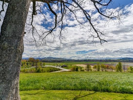 74.1 Acres  Nesbitt Drive, Mills River, NC - USA (photo 4)