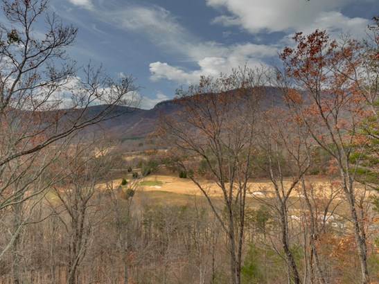 995 Deep Gap Farm Road, Mill Spring, NC - USA (photo 5)