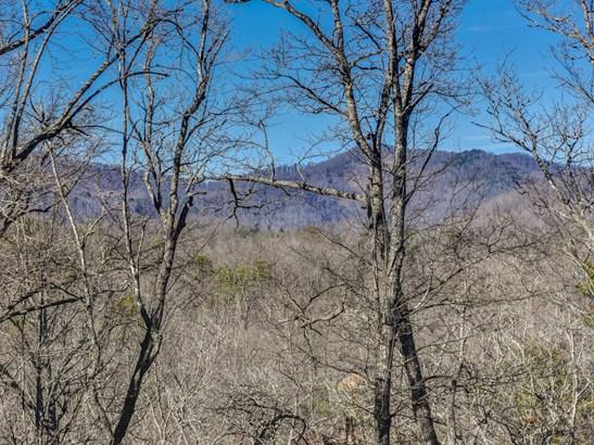 100  Buckhead Trail, Horse Shoe, NC - USA (photo 2)