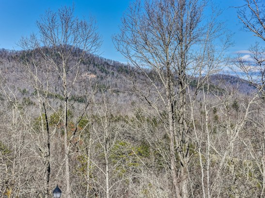 100  Buckhead Trail, Horse Shoe, NC - USA (photo 3)
