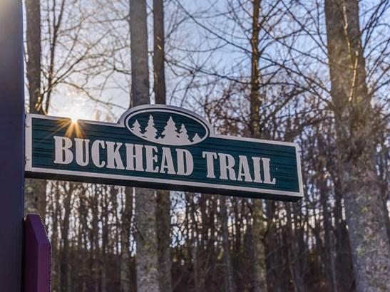 100  Buckhead Trail, Horse Shoe, NC - USA (photo 4)