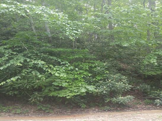 00  Bee Tree Road, Swannanoa, NC - USA (photo 2)