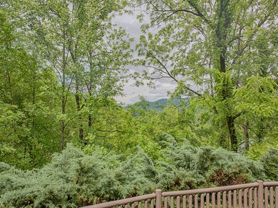 713  Campbell Mountain Drive, Waynesville, NC - USA (photo 3)