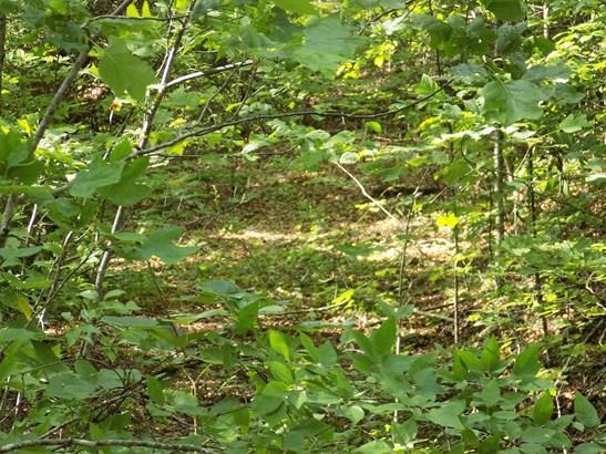 Lot 24  White Falcon Drive, Dillsboro, NC - USA (photo 1)