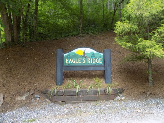 Lot 24  White Falcon Drive, Dillsboro, NC - USA (photo 3)