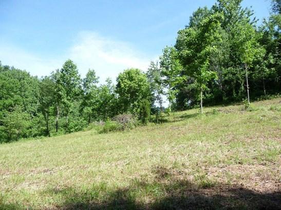 743 N Long Branch, Marshall, NC - USA (photo 2)