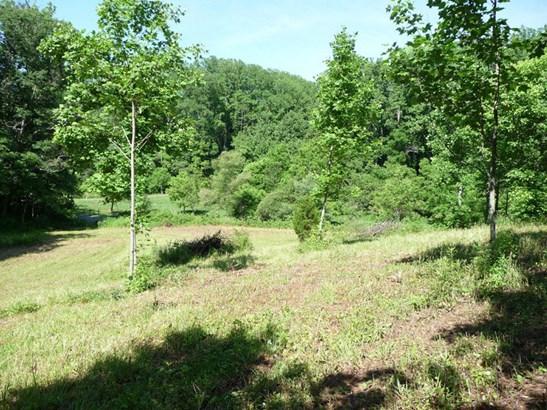 743 N Long Branch, Marshall, NC - USA (photo 5)